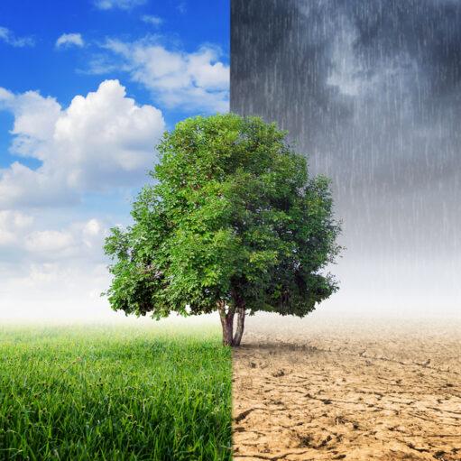 Astronomski aspekti klimatskih promjena